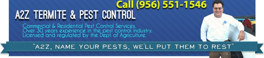 Pest Solution Brownsville Tx